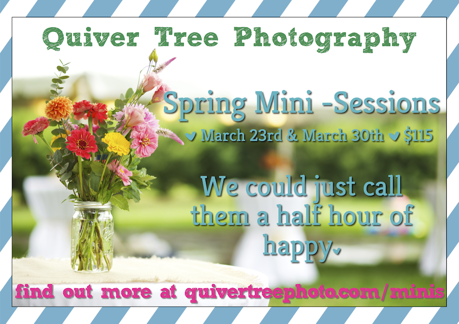 Spring Mini-Sessions are Coming!